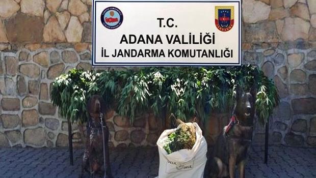 Adana'da ''Drone'' Destekli Uyuşturucu Operasyonu