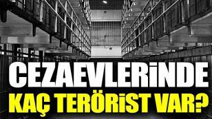 Cezaevlerinde kaç terörist var?