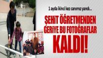 PKK'lı hainler Necmettin Öğretmeni şehit etti