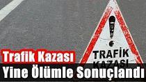 Adana'da Kamyonet Tarlaya Devrildi: 1 Ölü, 3 Yaralı