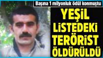 1 milyonluk ödüllü yeşil listedeki o terörist öldürüldü