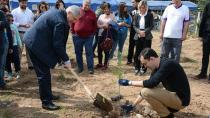 Çukurova Üniversitesi'nde 400 Fıstık Çamı Toprakla Buluştu