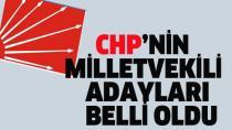 CHP'nin milletvekili adayları kesinleşti. İşte O sürpriz isimler...