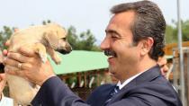 Soner Çetin'den yavru köpek eziyetine isyan!