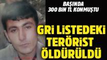 300 bin lira ödüllü terörist öldürüldü...