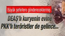 PKK'ya patlayıcı taşıyan DEAŞ'lı terörist kıskıvrak yakalandı