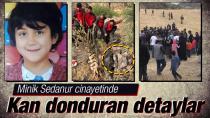 7 Gündür Kayıp Olan 9 Yaşındaki Sedanur'un Cansız Bedeni Bulundu