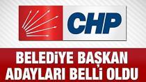 CHP'nin Adana adayı belli oldu...