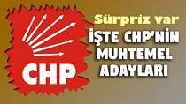 CHP Seyhan Adayı kim olacak?