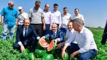 Adana, Yılda 1 Milyon Ton Karpuz Üretiyor