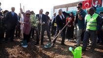 Adana'da 205 bin fidan toprakla buluştu...