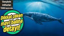 150 intiharda mavi balina şüphesi!