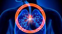Sigara bırakıldığında akciğerler kendi kendini yenileyebiliyor!