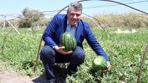 Ayhan Barut, karpuz tarlasında üreticilerle buluştu