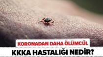 Kırım Kongo Kanamalı Ateşi vakaları Türkiye'de hızla artıyor!