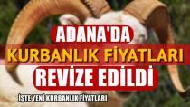 Adana'da kurbanlık fiyatları ve kesim ücreti açıklandı...