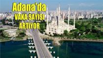 Adana'da krona alarmı...