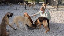 Başkan Erdem hayvan barınağını inceledi...