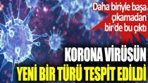Korona virüsün yeni bir türü tespit edildi...