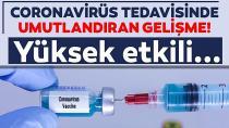 Haber Türkiye'den! Koronavirüs aşısında umutlandıran gelişme
