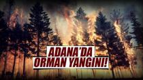 Kozan'ın ormanları yine alev aldı...