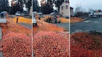 Çürük portakalları meyve suyu yaptılar...