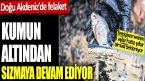 Doğu Akdeniz'de felaket!