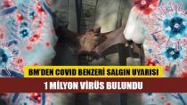 Bir milyon virüs bulundu! BM'den korona benzeri yeni salgın uyarısı