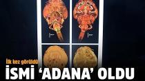 İlk kez görüldü, ismi 'Adana' oldu!
