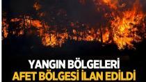 Yangından etkilenen yerler afet bölgesi' ilan edildi